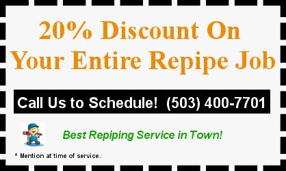 20% Discount on Entire Repipe Job Coupon